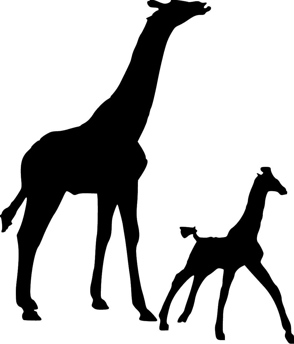 Giraffes Stencil | SP Stencils